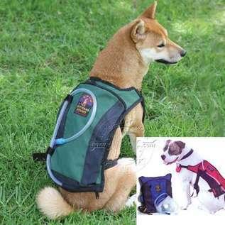 doggie Camelback